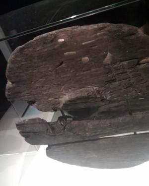 prehistorischwiel